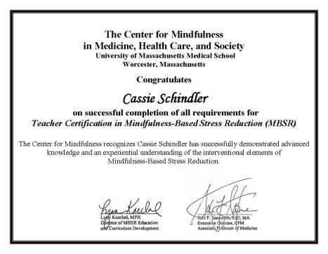 Schindler_certificate.jpg